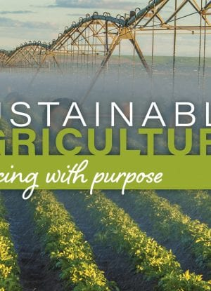 Sustainable Agriculture - Sourcing with purpose